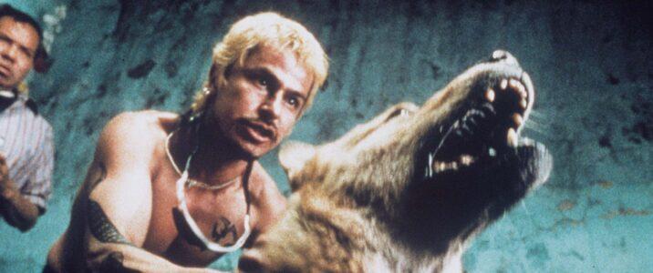 Sadist thug Jarocho (Gustavo Sanchez Parra) sics his dog in the ring in Alejandro Gonzalez Inarritu's